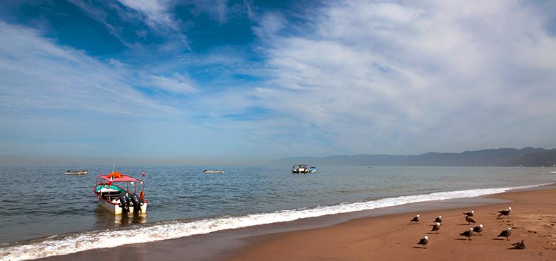 """Visita otras playas cerca de """"playa de oro"""""""