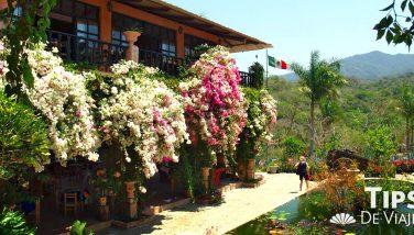 Conoce el encantador Jardín Botánico en Puerto Vallarta